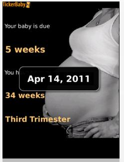 trimester